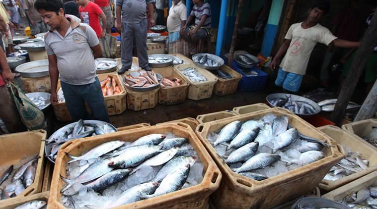 पटना में मछली बेचते पकड़ाए तो 7 साल की सजा और 10 लाख जुर्माना